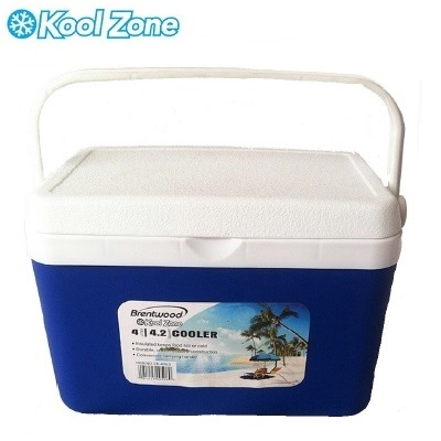 4 Liter (4.2Qt) Cooler Box / Ice Chest